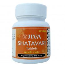 シャタバリ|JIVA
