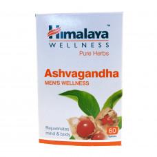 アシュワガンダ|ヒマラヤ