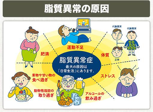 脂質異常(高脂血症)の原因