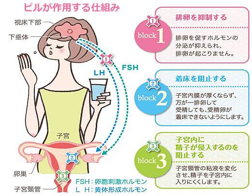 避妊ピルの作用